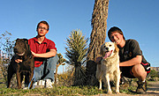 Dylan and Jason with Dogs